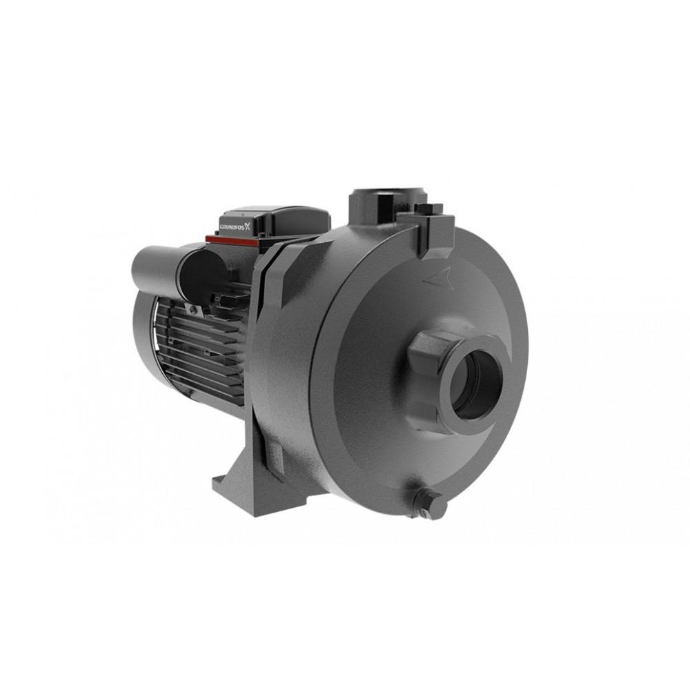 Grundfos Horizontal water pump NS6-30 / 1.5 Horsepower